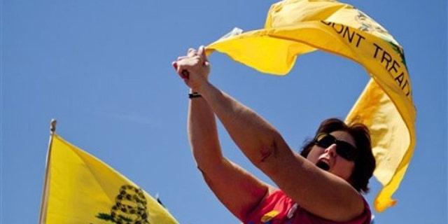 """Sept. 12: Mary Syron, of St. Louis, gathers with other Tea Party supporters on the steps of the Gateway Arch during the """"Gateway to November"""" rally hosted by the St. Louis Tea Party and Tea Party Patriots in St. Louis."""