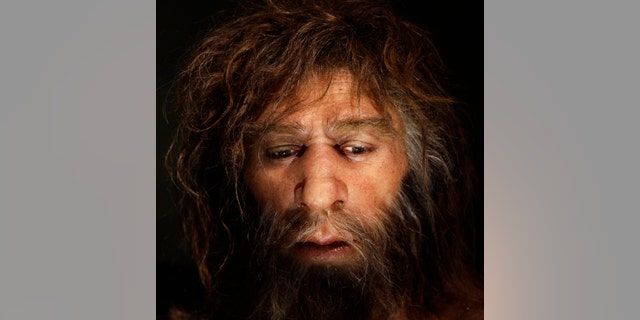 Hyperrealistic face of a Neanderthal male is displayed in a cave in the new Neanderthal Museum in the northern Croatian town of Krapina. (Reuters)