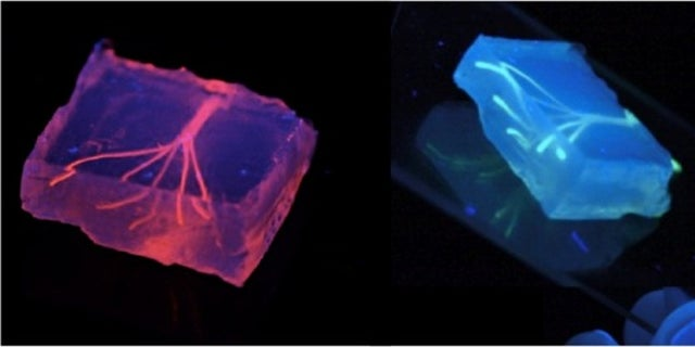 Researchers created artificial blood vessels using hydrogel constructs that combine advances in 3D bioprinting technology and biomaterials.
