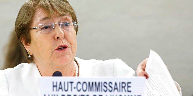 UN High Commissioner for Human Rights Michelle Bachelet said her office will send teams to Austria and Italy to investigate treatment of migrants.