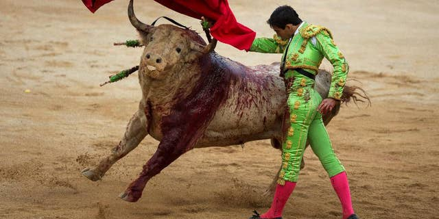 Spanish bullfighter Jimenez Forte performs with a Fuente Ymbro ranch fighting bull during a bullfight of the San Fermin festival in Pamplona, Spain, Saturday, July 12, 2014. Revelers from around the world arrive to Pamplona every year to take part in some of the eight days of the running of the bulls. (AP Photo/Andres Kudacki)