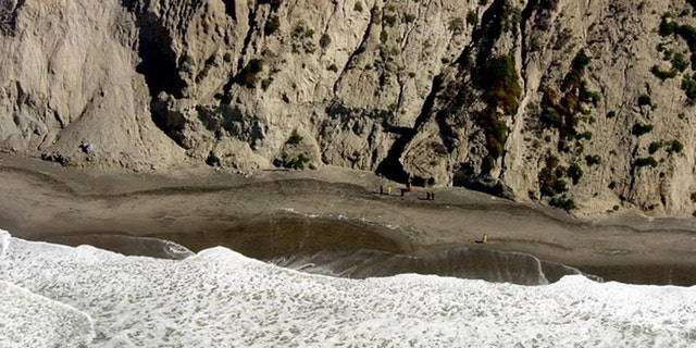 A 67-year-old man fell to his death from a cliff while trying to rescue his dog at Thornton Beach in Daly City, Calif. on Monday.