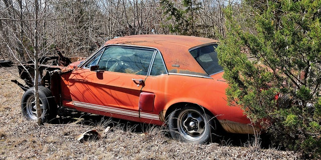Little Red' 1967 Ford Mustang Shelby GT500 found after 50 years