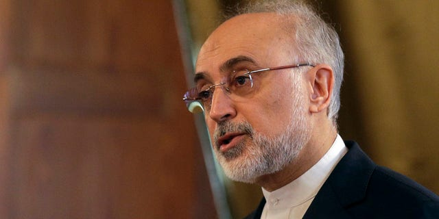 """""""The failure of the nuclear deal will undermine the political credibility and international stature of the U.S. in this tumultuous political environment,"""" Iranian nuclear chief Ali Akbar Salehi said."""