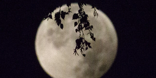 File photo: A supermoon appears after a total