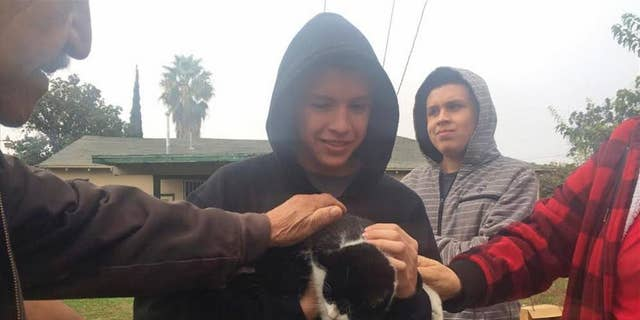 Andrew Perez reunites with his cat, Fat Boy, after a Pacific Gas and Electric Co. crew rescued the feline from atop a 45-foot power pole, Tuesday, Nov. 22, 2016, in Fresno, Calif.