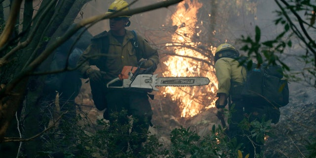 Firefighters from Kern County, Calif., work to put out hot spots during a wildfire Saturday, Dec. 16, 2017, in Montecito, Calif.