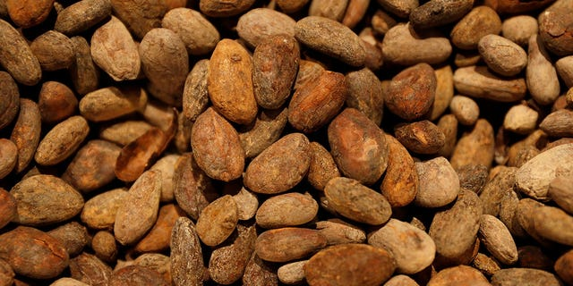 Warmer temperatures across the globe could lead to fewer and fewer regions where cocoa beans can be produced.