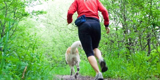 Woman running with akita dog in summer forest, motion blur