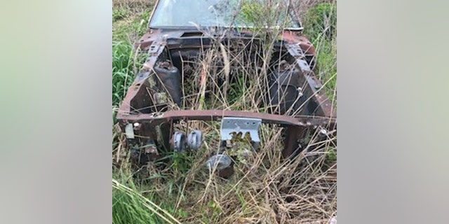 Rotting Ford Mustang on Ebay turns out to be a rare classic | Fox News