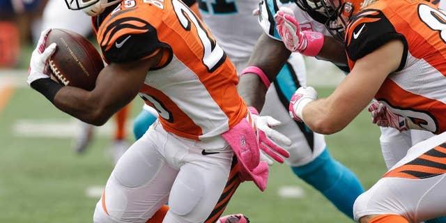 Cincinnati Bengals running back Giovani Bernard (25) breaks thru the line on his way to an 89-yard touchdown run against the Carolina Panthers in the first half of an NFL football game, Sunday, Oct. 12, 2014, in Cincinnati. (AP Photo/AJ Mast)