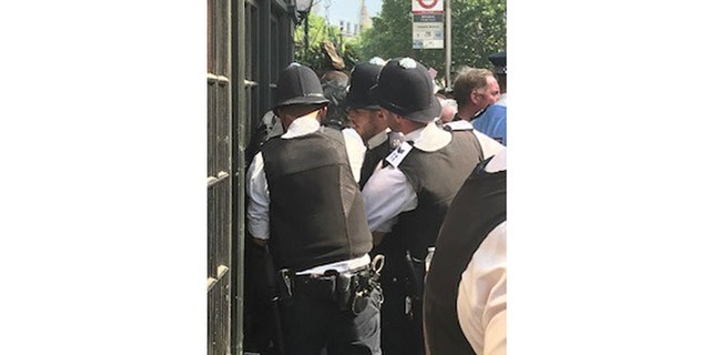 An anti-Trump protester is arrested in London.