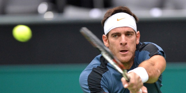 Juan Martin del Potro of Argentina returns a shot to Ernests Gulbis of Latvia at the ABN AMRO world tennis tournament at Ahoy Arena in Rotterdam, Netherlands, Thursday Feb. 14, 2013. (AP Photo/Ermindo Armino)