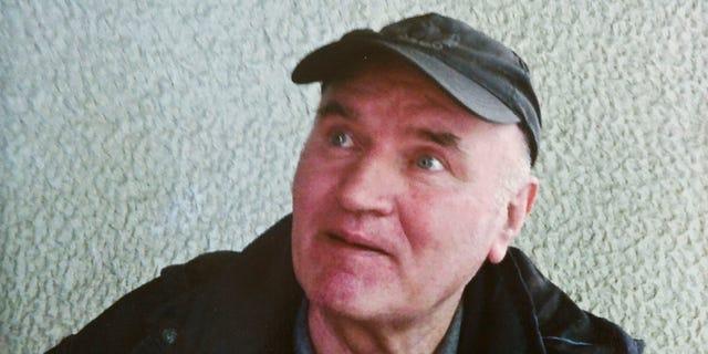 Ratko Mladic in 2011.