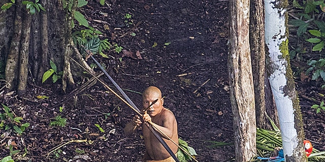 An isolated tribesman in the remote jungles of Brazil (PHOTOGRAPH OF RICARDO STUCKERT).