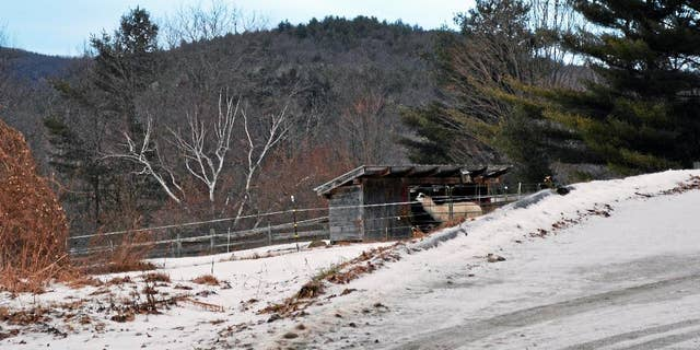 In this Jan.19, 2015 photo, an animal stands in a shed on the grounds of Butterfield Farm Co., in Cornwall, Conn., where more than 70 dead animals have been found since the state Department of Agriculture seized 74 sickly goats from the property in January. Tara Bryson and Michael Hearl, both of West Suffield, face prosecution on animal cruelty charges in Bantam Superior Court in Litchfield. They are free on bond. (AP Photo/The Register Citizen, Amanda Webster) MANDATORY CREDIT.