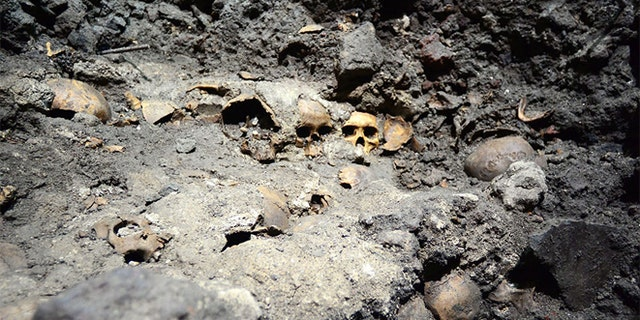 In this May 30, 2015 photo released by Mexico's National Institute of Anthropology and History (INAH), skulls are partially unearthed at the Templo Mayor Aztec ruin site in Mexico City. (Hector Montano/INAH via AP)