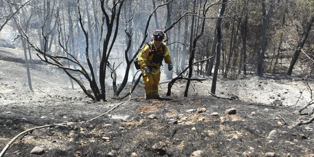 September 10, 2013: Colusa, Calif., Fire Captain Brad Long climbs up a steep incline after putting out hotspots off Clear Creek Road. He was part of the mop-up effort after the Clover Fire burned more than 7,000 acres in the Happy Valley area of Shasta County. (AP Photo)