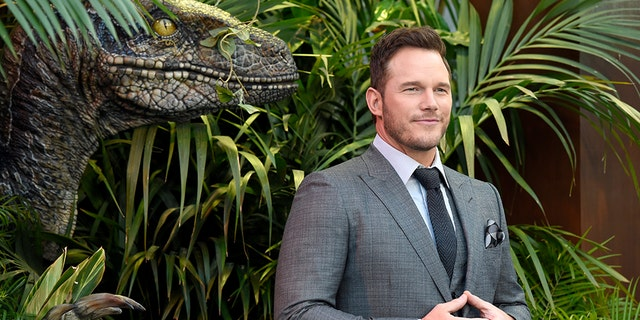 Chris Pratt thanked veterans for their service in an emotional post on Memorial Day.
