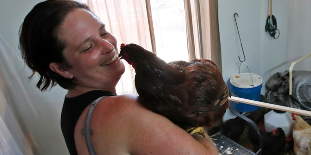 Grace Hoss holds her rooster inside an inclosure made in her neighbor's home to hold their combined chickens, Wednesday, Sept. 12, 2018, in Chesapeake, Va., as Hurricane Florence moves towards the eastern shore. (AP Photo/Alex Brandon)