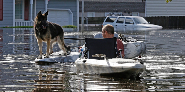 A man tries to get his dog out of a flooded neighborhood in Lumberton, N.C., Monday, Sept. 17, 2018, in the aftermath of Hurricane Florence. (AP Photo/Gerry Broome, File)