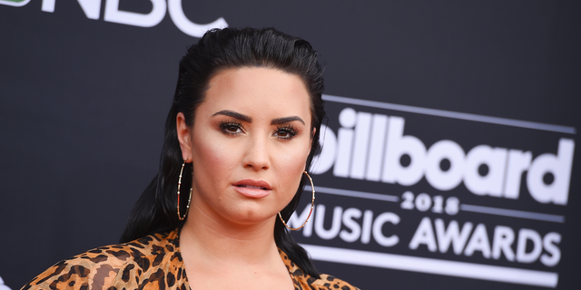 The mother-daughter owners of popular Los Angeles frozen yogurt shop, The Bigg Chill, told Fox News on Monday that they were taken aback by Demi Lovato's public social media outburst at their abundance of sugar-free offerings.