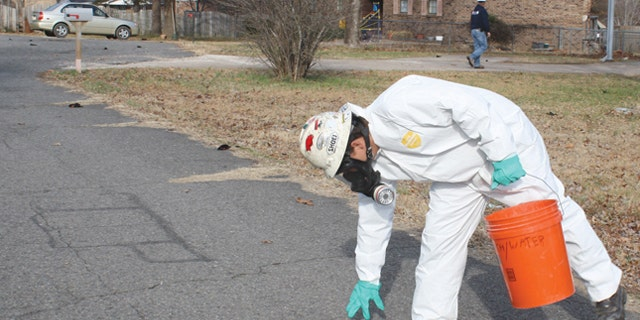 Jan. 1: An Environmental Services worker picks up a dead bird in Beebe, Ark. as other dead birds line the street behind him.