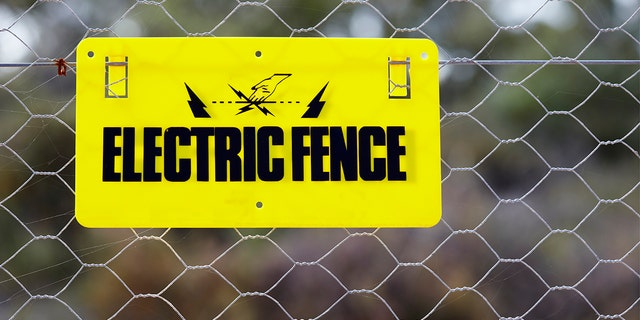 """The man said he erected the fence because """"nothing stops people."""""""