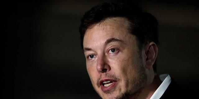 Tesla CEO Elon Musk in June.