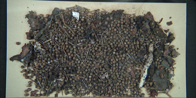 2013 Boston Marathon bomb shrapnel, including BB's and nails, from pressure cooker.