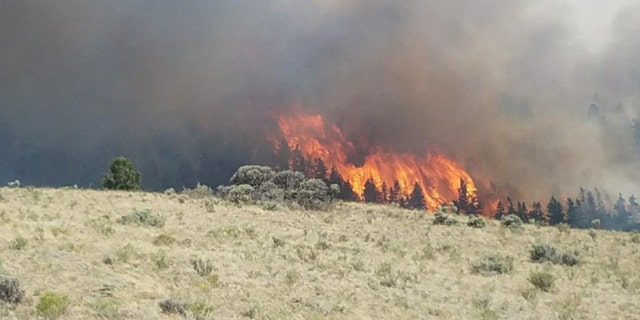 The Spring Creek Fire has been raging out of control in Costilla County, Colorado.