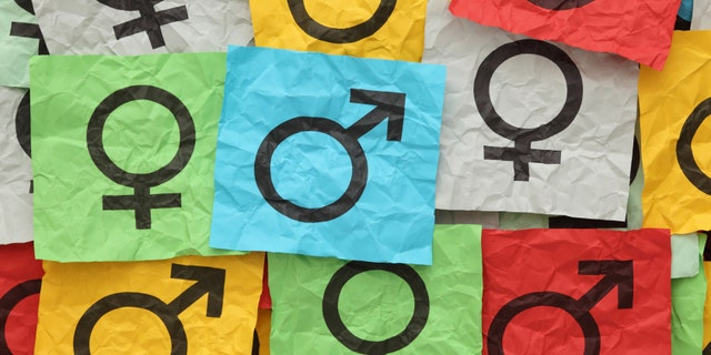 Crumpled colorful paper notes with gender symbols.