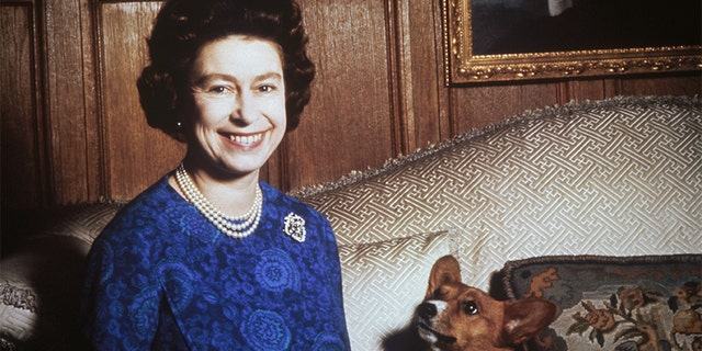 Queen Elizabeth II and one of her beloved corgis from over the years.