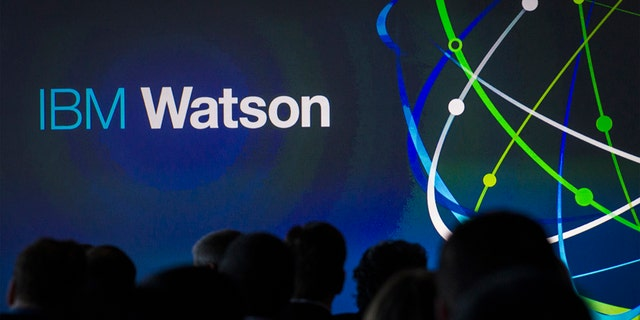File photo - Attendees gather at an IBM Watson event in lower Manhattan, New York Jan. 9, 2014.