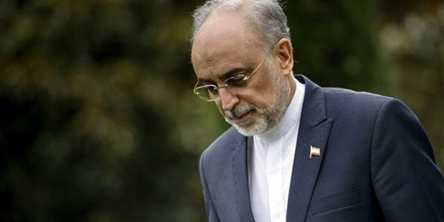 The Head of the Iranian Atomic Energy Organization Ali Akbar Salehi walks through a garden at the Beau Rivage Palace Hotel during an extended round of talks on Iran;s nuclear program, in Lausanne, Switzerland, Thursday April 2, 2015. (AP Photo/Brendan Smialowski, Pool)
