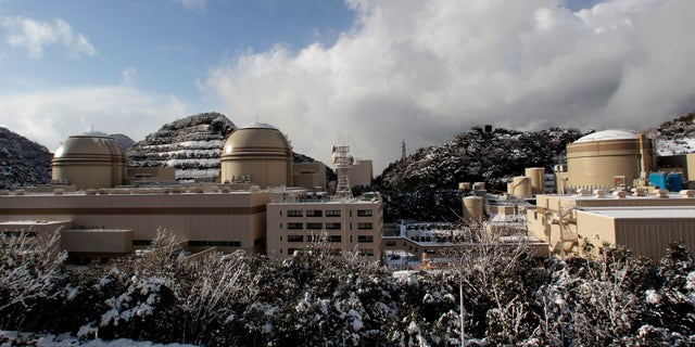 Jan. 26, 2012: In this file photo, the Ohi nuclear power plant reactors, No. 2, right, No. 3, center, and No. 4, are seen in Ohi, Fukui prefecture, north of Tokyo.