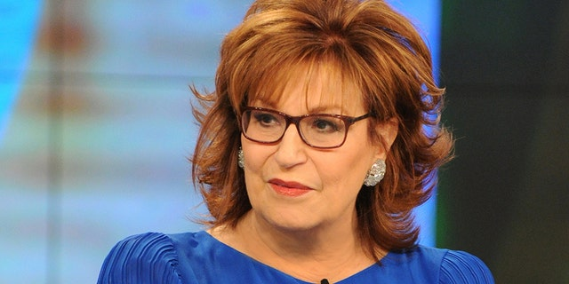 Co-host Joy Behar enjoyed Hostin's point, prompting her to repeat it.