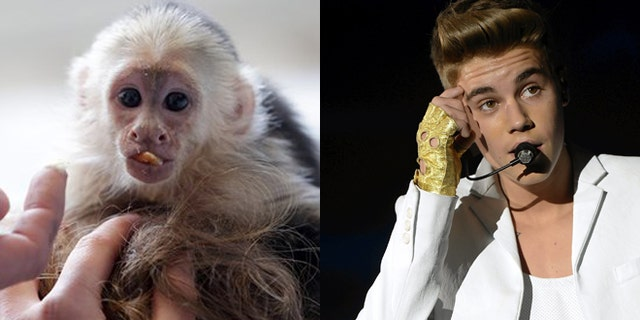 Justin Bieber, right, and his pet monkey are shown.
