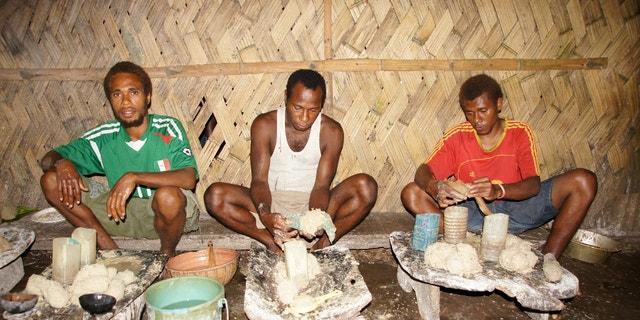 Native Pacific Islanders ground kava.