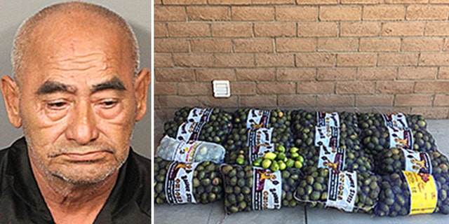 Dionicio Fierros, 69, allegedly stole 800 pounds of freshly picked lemons from a farm in Riverside, California, according to the sheriff's department.
