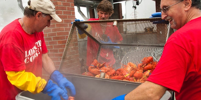 Festivalgoers stand over a batch of freshly cooked lobsters.