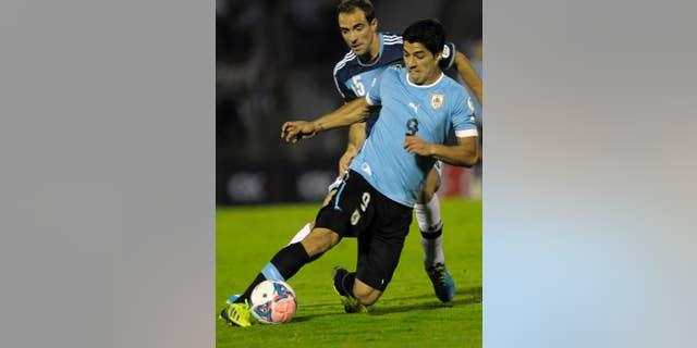 El jugador de la selección de Uruguay, Luis Suárez, al frente, disputa un balón en un amistoso contra Argentina el 15 de octubre de 2013 en Montevideo, Uruguay.(AP Photo/Matilde Campodonico,File) - SEE FURTHER WORLD CUP CONTENT AT APIMAGES.COM