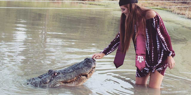 """Makenzie Noland plays with a gator named """"Big Tex"""" at Gator Country in Beaumont, Texas, as she poses for graduation photos."""