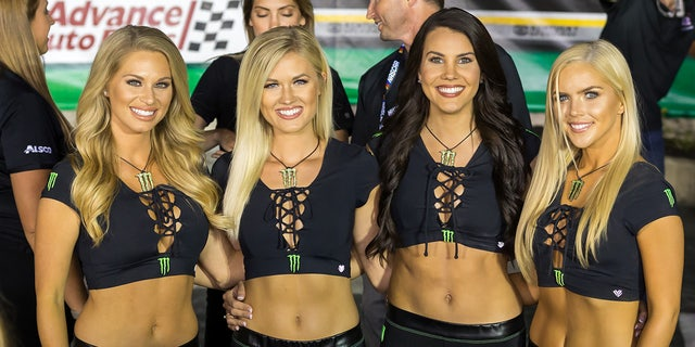 Monster Energy is a big conglomerate based in California with 2,500 employees. The company's roots date to the 1930s. Its products are sold around the world and reportedly generate more than $28 billion a year in revenue; Pictured are some of the Monster Girls, who can be seen at Nascar races