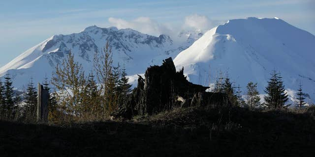 Mount St. Helens is a stratovolcano known for its deadly eruption in