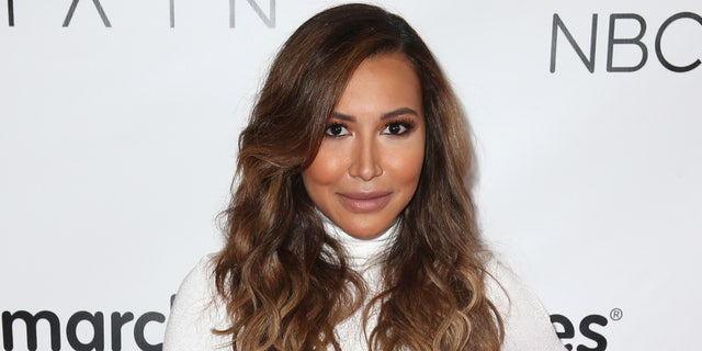 Naya Rivera. (Photo by Joe Scarnici/Getty Images for March Of Dimes)