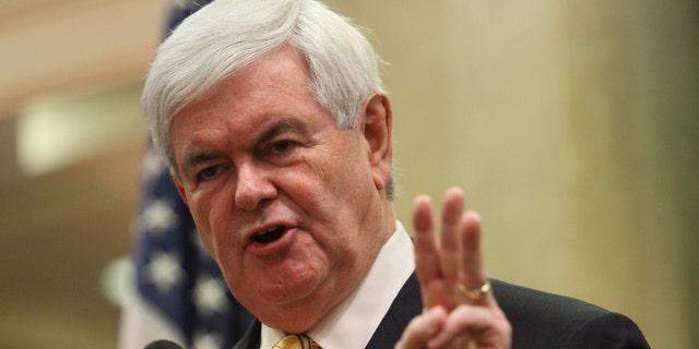 Newt Gingrich, contendiente a la candidatura republicana a la presidencia, habla durante una reunión en el hotel Hilton de Naples, Florida, el viernes 25 de noviembre de 2011.  (Foto AP/Erik Kellar)