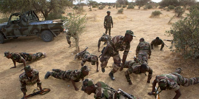 Soldiers in Niger