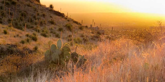 This undated photo provided by Organ Mountains Desert Peaks National Monument shows the landscape at the Organ Mountain Desert Peaks National Monument, near Las Cruces, N.M. Following a nearly decade-long campaign to gain protection for the Organ Mountains in southern New Mexico, the White House says President Obama will designate the area a national monument. (AP Photo/ Lisa Mandelkern)
