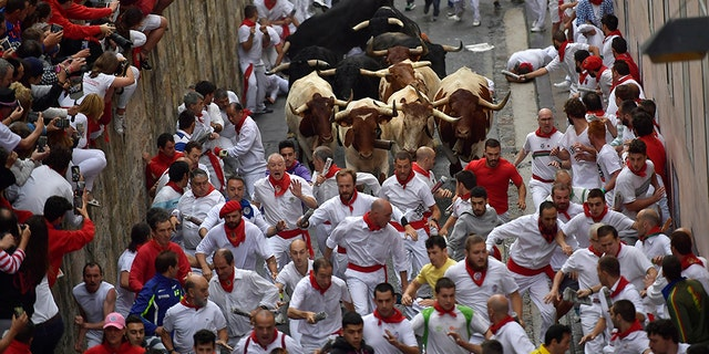 Revellers run next to Puerto de San Lorenzo's fighting bulls during the running of the bulls at the San Fermin Festival, in Pamplona, northern Spain, Saturday.